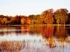 brookside-fall